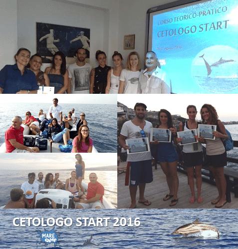 Cetologo Start: lezioni e avvistamenti